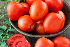 Bonnie H-8009 Heinz Tomato