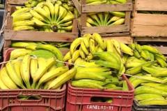 Fornecimento para rede de supermercados do RJ